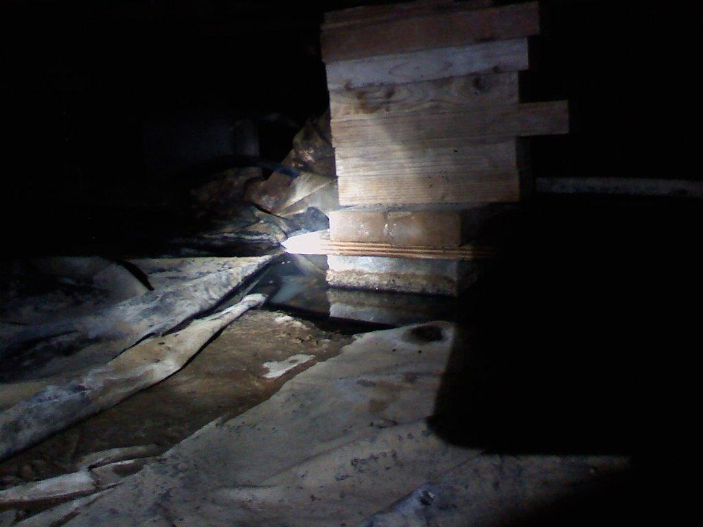 Crawl Space Leak with Mold