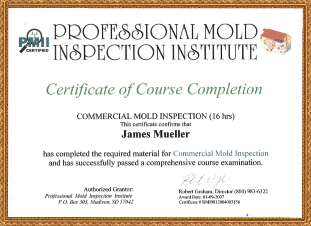 MOLD_Commercial